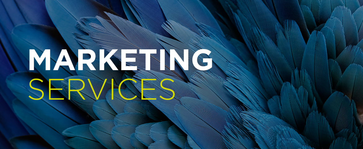 Marketing Services, Based in newbury